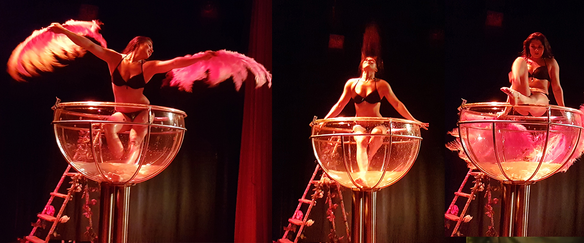 Stijlvolle Burlesque Shows
